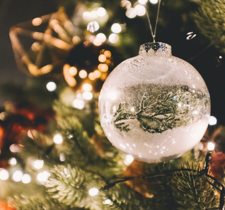 Juletræ Horsens Stensballegaard Case