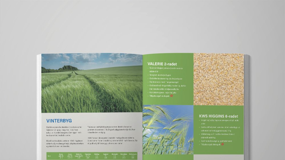 SideWalk_Grafiker_Brochure