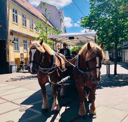 Hestevognskørsel_Randers_City